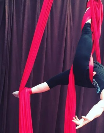 Aerialize: Kids Circus & Aerial Classes & Holiday Workshops (2yrs+)